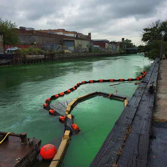 cminard1012 the one where they dye the gowanus canal flourescent green