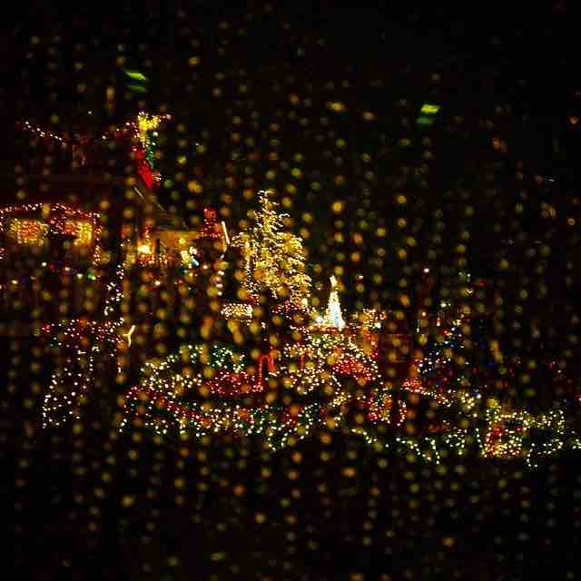 rosielovesarturo checking out the christmas  lights in dyker heights in the rain from the comfort of a dray warm car copy